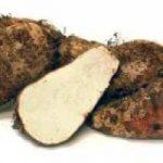 Fu Zi (ou Fu Tzu) - Tuber Aconiti Preparata, componente do fitoterápico Xiao Huo Luo Dan